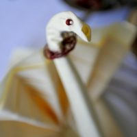 sala weselna bełchatów