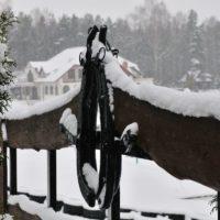 stadnina koni jazda konna