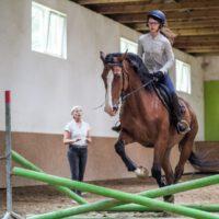 szkółka jeździecka radomsko